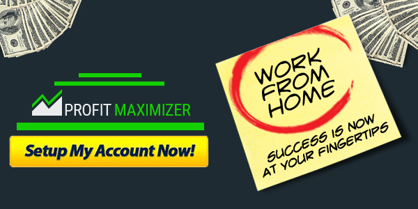 Profit Maximizer System
