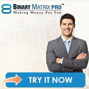 binary matrix pro system